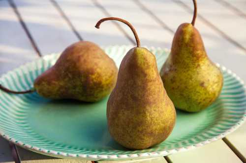 Быть грушей так же вредно как и яблоком