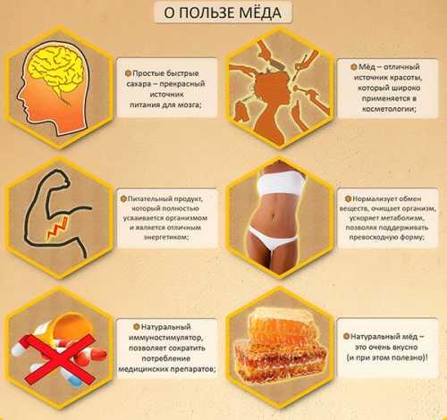 Рассказываем про мёд, в чём его польза и вред,