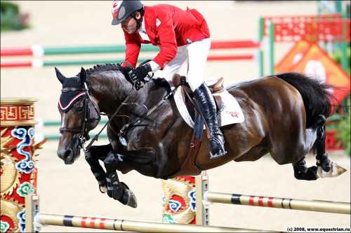 Перестаньте ставить на лошадей, снятых с соревнований