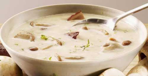 Рецепты грибного супа из вешенок, секреты выбора