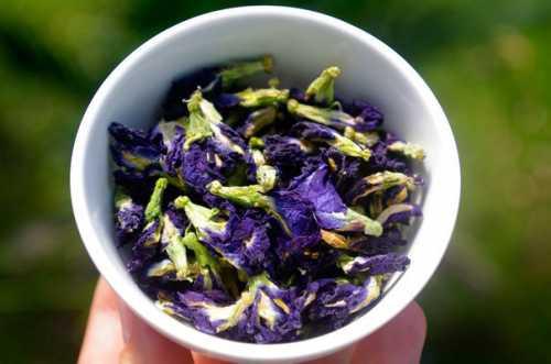 Синий чай из Тайланда