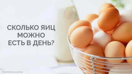 Сколько яиц можно съедать в день: польза яиц для