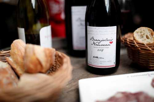 Божоле нуво: с чем пить молодое вино
