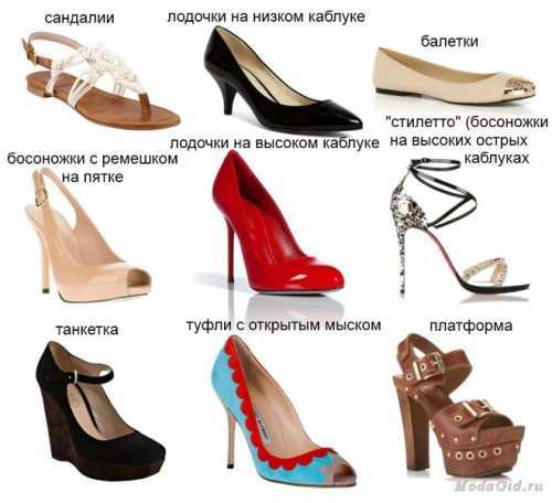 Принципы выбора каблука женских туфель