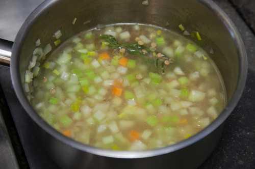 Рецепты постного супа из чечевицы, секреты выбора
