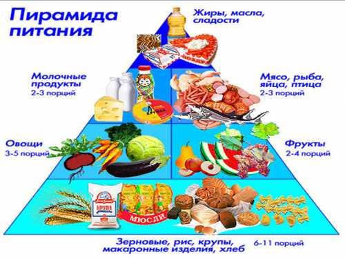 Большой объем пищи увеличивает желудок и растягивает кишечник, что вызывает сдавливание близлежащих органов и нарушает их нормальное кровоснабжение