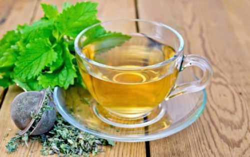 Польза чая с мелиссой, возможный вред, кому  чай